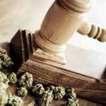Massachusetts Court Rules Employees Can't be Fired for Using Medical Cannabis