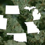 More Red & Swing States Legalize Marijuana