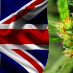 UK Legalizes Cannabis-Based Prescriptions