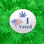 Cannabis at the Ballot Box: Which States Will Legalize?