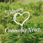 February 2019 Cannabis News Highlights