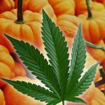 October Cannabis Industry News Highlights